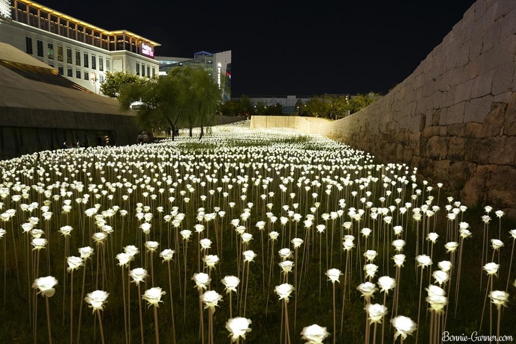 Dongdaemun Design Plaza, Seoul South Korea
